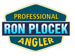 Ron Plocek Website Launch